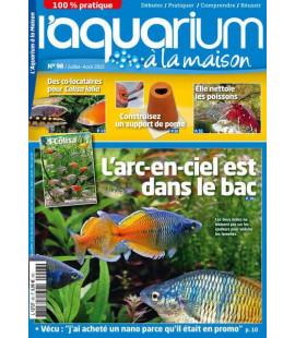 Aquarium à la maison n° 098...