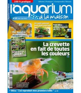 Aquarium à la maison n° 097...