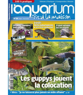 Aquarium à la maison n° 096...