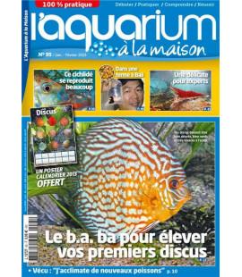Aquarium à la maison n° 095...