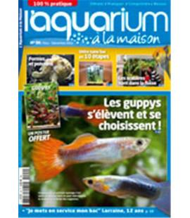 Aquarium à la maison n° 094...