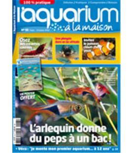Aquarium à la maison n° 093...
