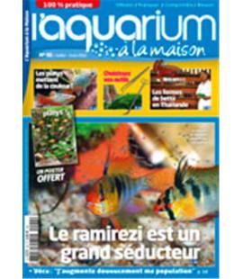 Aquarium à la maison n° 092...
