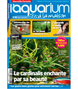 Aquarium à la maison n° 090...