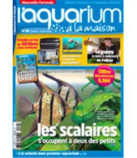 Aquarium à la maison n° 089...
