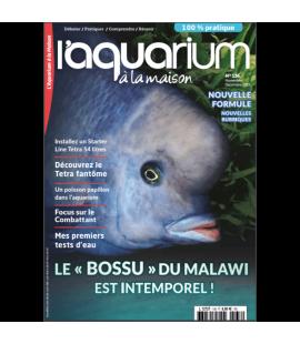 Aquarium à la maison n° 136...