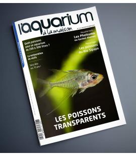 Aquarium à la maison n° 143...