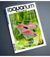 Aquarium à la maison n° 144...