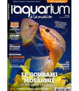 Aquarium à la maison n° 130...