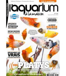 Aquarium à la maison n° 129...