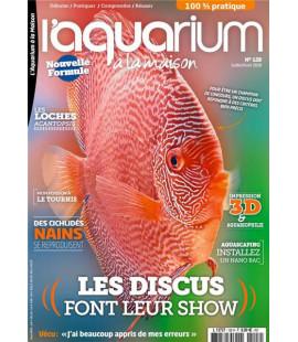 Aquarium à la maison n° 128...