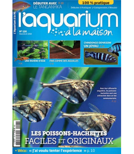 Aquarium à la maison n° 126...