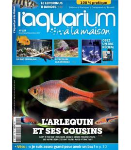 Aquarium à la maison n° 124...
