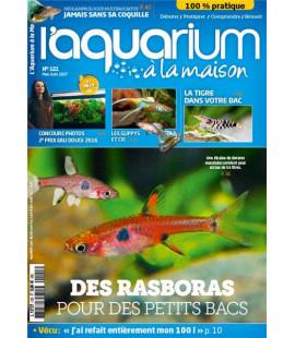 Aquarium à la maison n° 121...