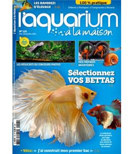 Aquarium à la maison n° 118...