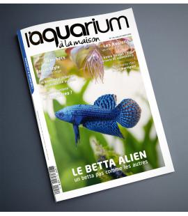 Aquarium à la maison n° 140...