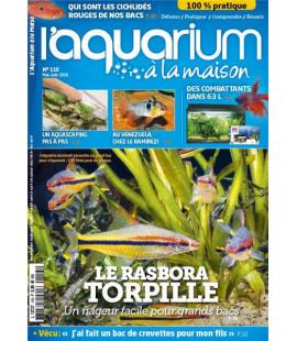 Aquarium à la maison n° 115...
