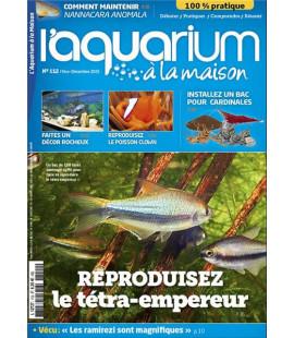 Aquarium à la maison n° 112...