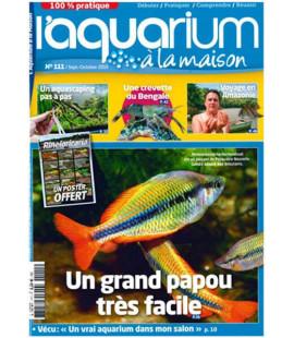 Aquarium à la maison n° 111...