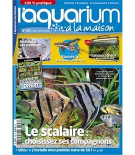 Aquarium à la maison n° 107...