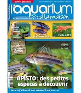 Aquarium à la maison n° 106...