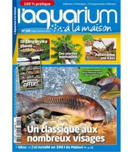 Aquarium à la maison n° 105...