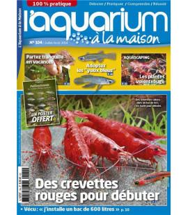Aquarium à la maison n° 104...