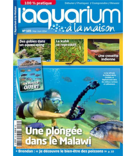 Aquarium à la maison n° 103...