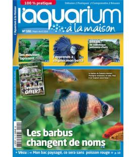 Aquarium à la maison n° 102...