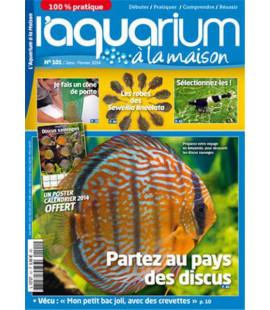 Aquarium à la maison n° 101...