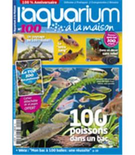 Aquarium à la maison n° 100...