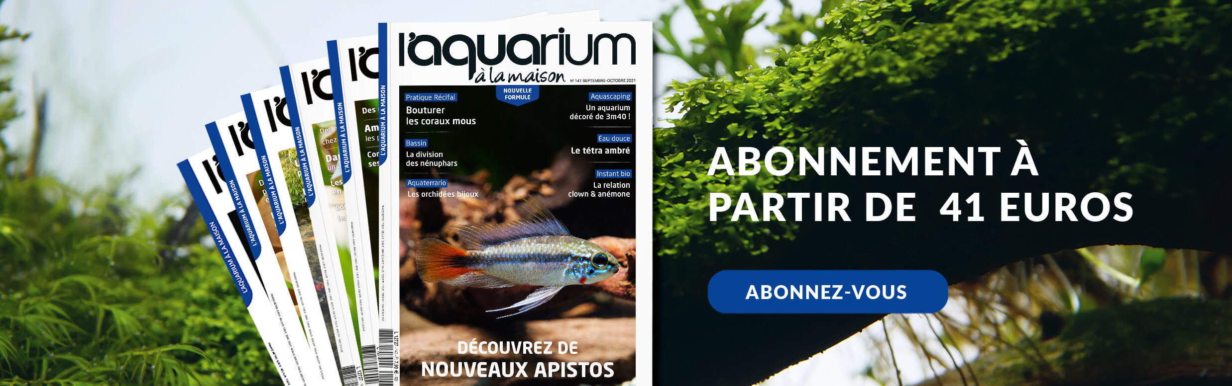 Abonnement à l'aquarium à la maison