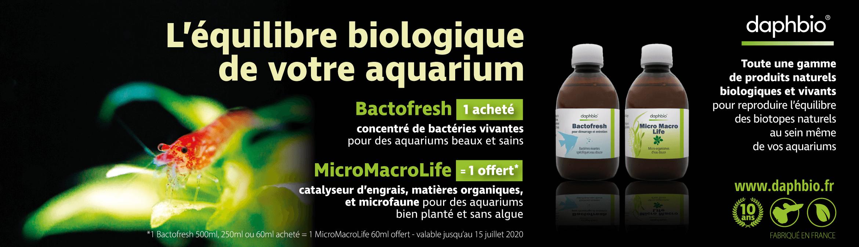 Daphbio l'équilibre biologique de votre aquarium